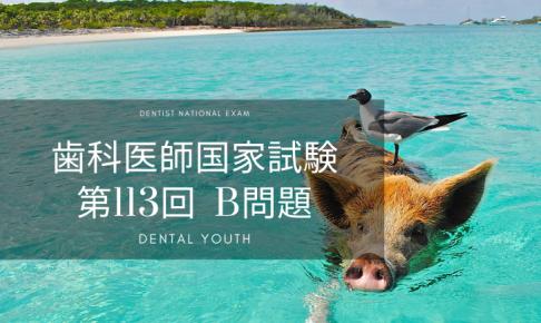 第113回 歯科医師国家試験 B問題
