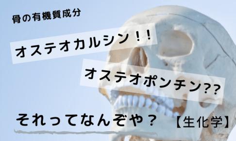 骨の有機質成分:オステオカルシン・オステオポンチン
