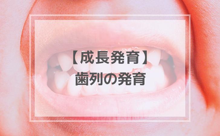 歯列の発育