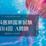 第114回 歯科医師国家試験:A問題