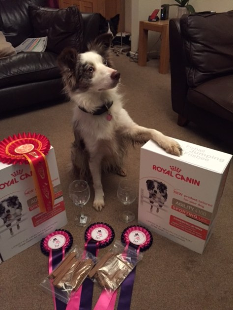 Pixie showing off her winnings!