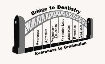 Bridge to Dentistry illustration