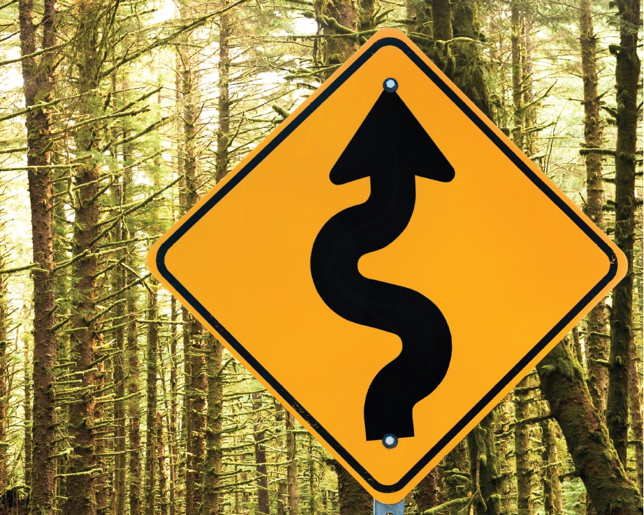 Road sign in the woods