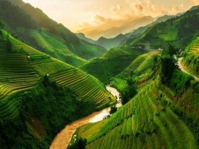 Rice terrace field near Sapa in Vietnam