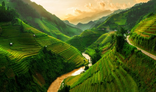 Rice terrace field near Sapa in Vietnam