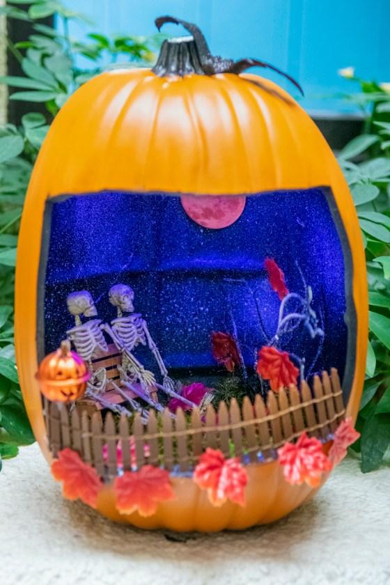 Light-up skeleton 3rd place – Cristina Rivera Comprehensive dentistry