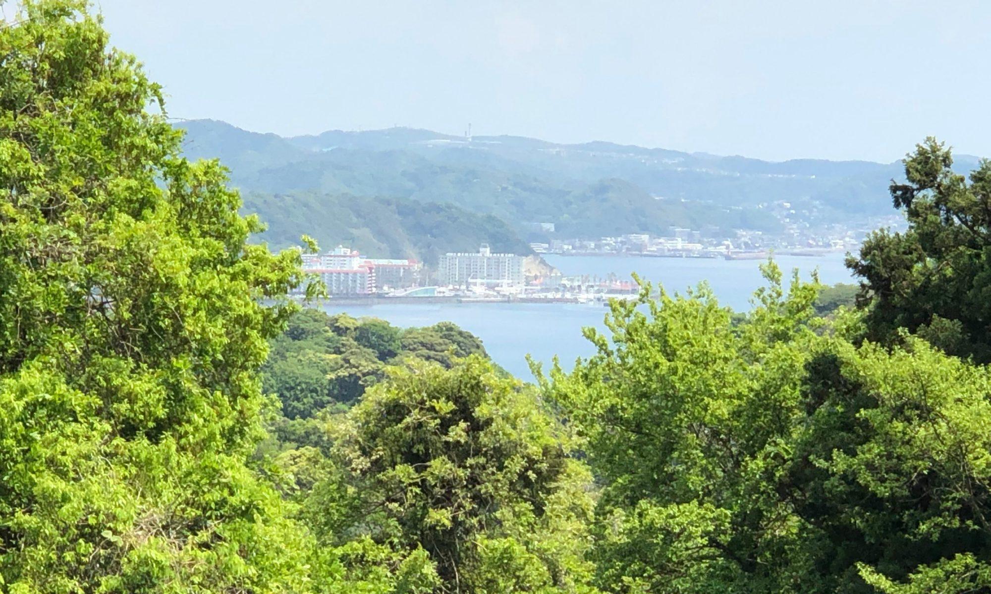 鎌倉山神社界隈から逗子マリーナを望む