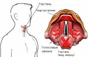 Таблетки от отека горла — Нет насморка