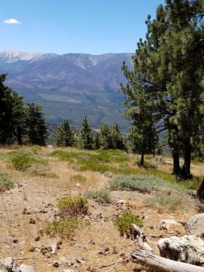 Mountain loop trail Snow Summit