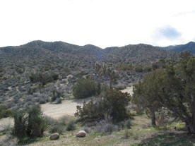 View From Campsite #97