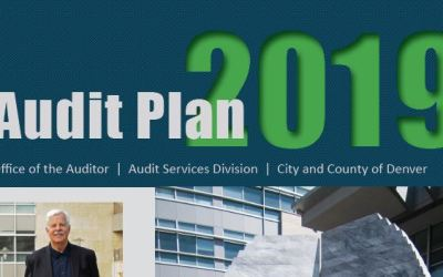 Audit Plan: Public Health and Safety, Social Services, Contract Oversight Top Priorities in 2019