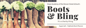 Boots & Bling header
