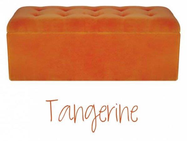 LEMONBE_Colors2015_Spring_tangerine-e1422296440945