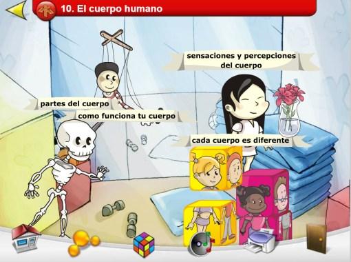 temas sobre el cuerpo humano