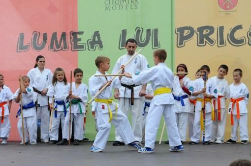 niños haciendo artes marciales en una exhibición de colegio