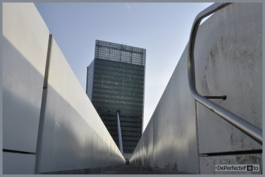 © De Perfecte Foto - Rotterdam (31) (Kopie)