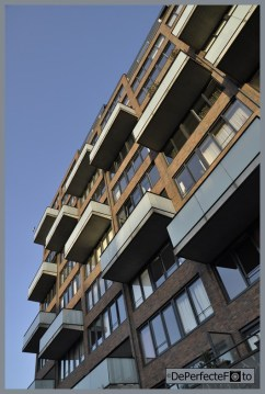 © De Perfecte Foto - Rotterdam (35) (Kopie)