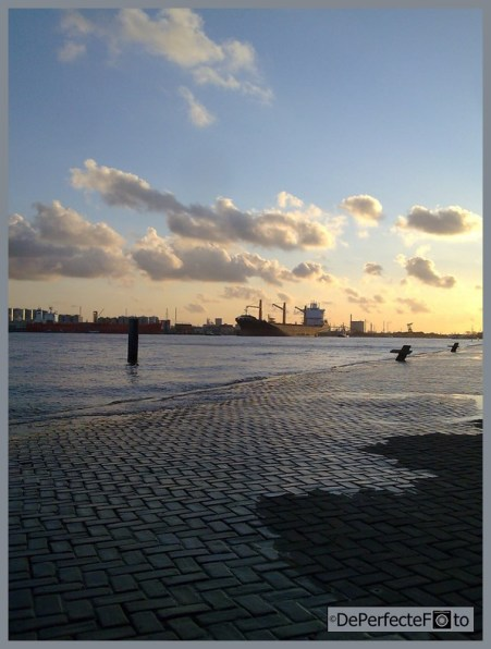 © De Perfecte Foto - Rotterdam (42) (Kopie)