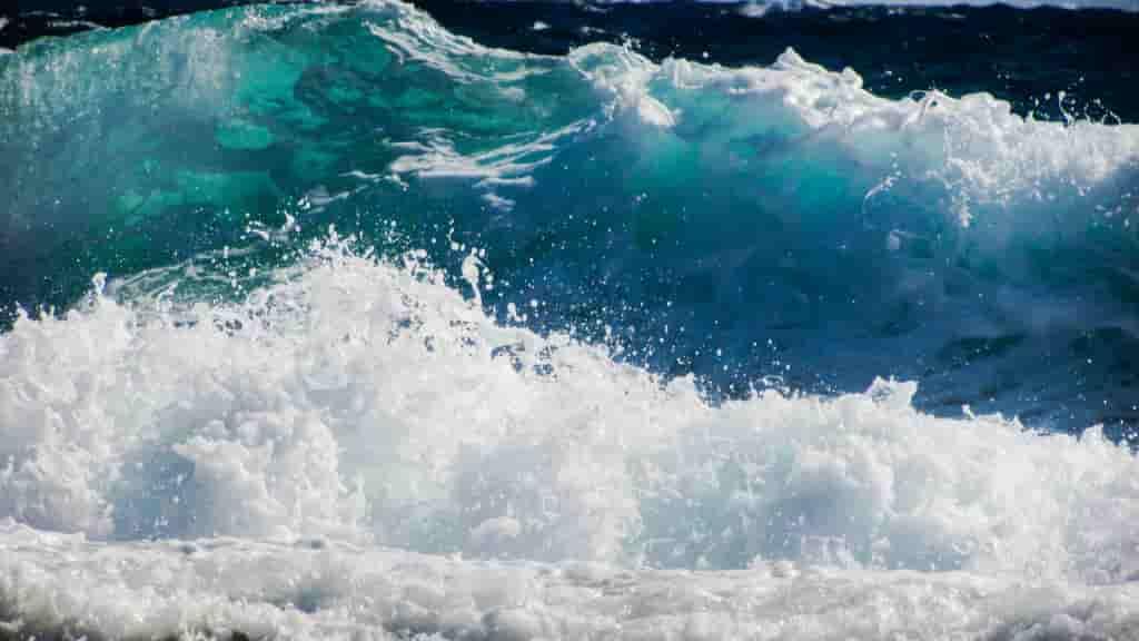 ≫ Los 7 tipos de carretes de Pesca más utilizados por el pescador