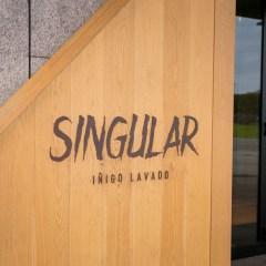 Singular Food (Irun)