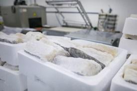 de planes por la comarca empresas bacalao bacalaos santymar irun gipuzkoa gastronomia bidasoa txingudi devisita 58