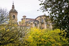 Iglesia de Santa Maria de la Asunción y del Manzano (Hondarribia)