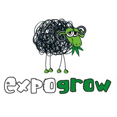 Expogrow 2018, VII Feria Internacional del Cañamo (Irun)