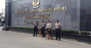 2 ekor anjing pelacak standby di pintu gerbang Mako Brimob Kelapa Dua Depok.