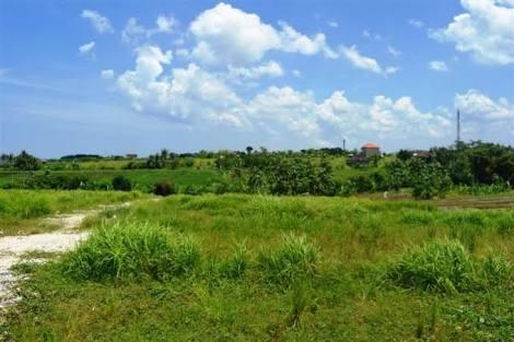 Ada tanah seluas 200 hektar di wilayah Kabupaten Bogor seluas 200 hektar.