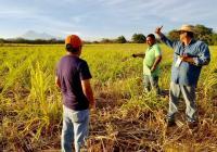 Sembrando vida dispersa más de 17 Mdp en Colima, anuncia Indira Vizcaíno