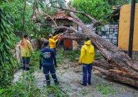 """Protección Civil del municipio de Colima atiende de manera oportuna daños ocasionados por la tormenta """"Dolores"""""""