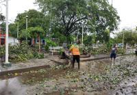 Protección Civil ha atendido 120 reportes de afectaciones ocasionados por Dolores