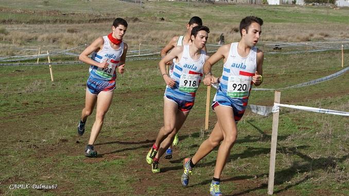 11 Triunfos de los atletas del CAPEX en el Cross de Berlanga