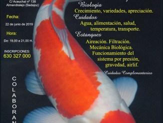 Ponencia sobre la carpa KOI en Almendralejo sábado 22-Junio-2019