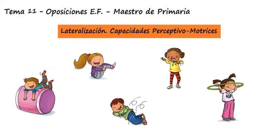 Tema 11: El esquema corporal, el proceso de lateralización. Desarrollo de las capacidades perceptivo – motrices