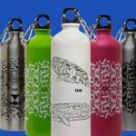 botellas-verdes-kaab