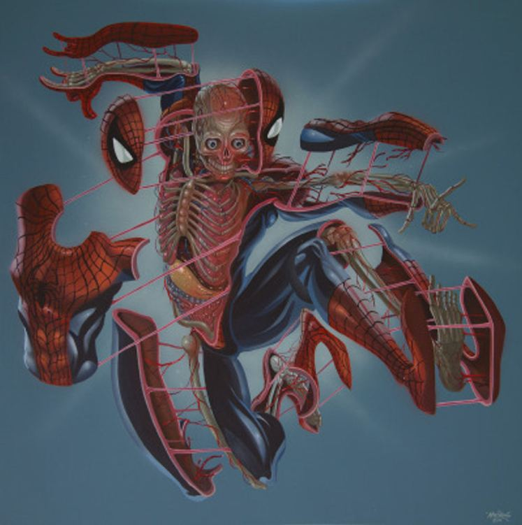 anatomia-deposito-nerd (1)