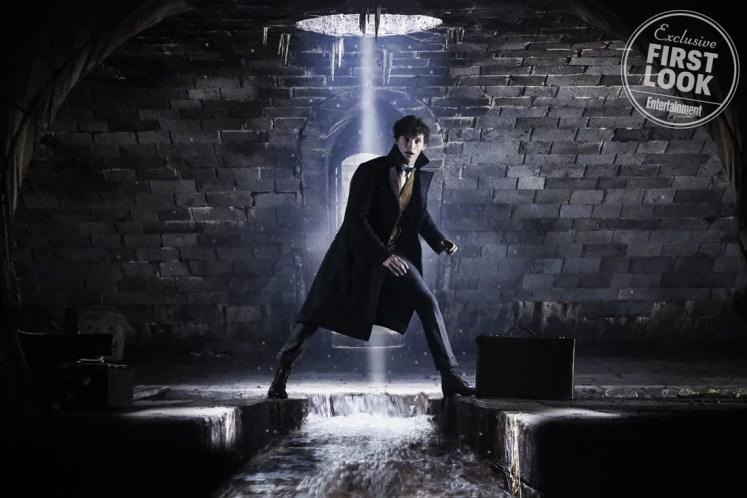 Divulgado as primeiras imagens de Newt e Dumbledore em Animais Fantásticos: Os Crimes de Grindelwald!