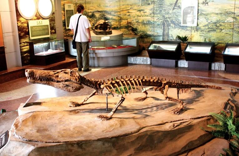 Visiting the Zigong Dinosaur Museum