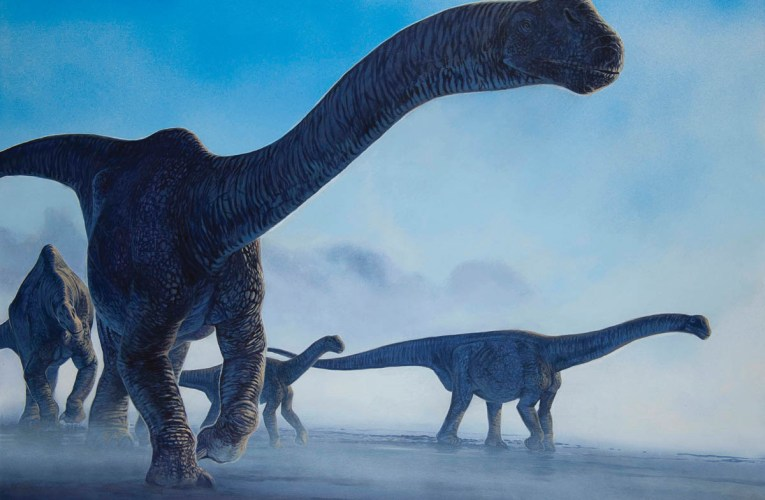 Discovering dinosaurs in Britain: The significance of the British dinosaur record