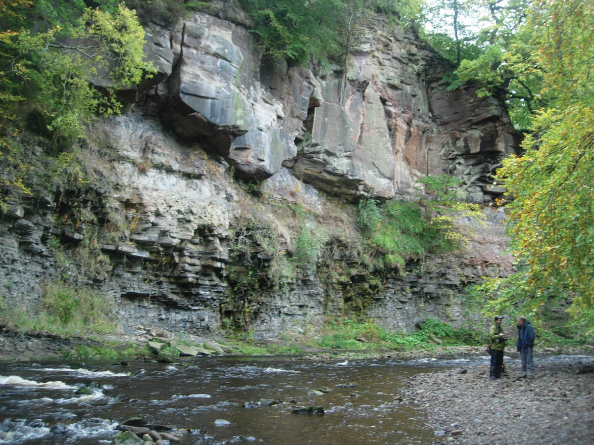Rocks in Roslin Glen: a record of a swampy past