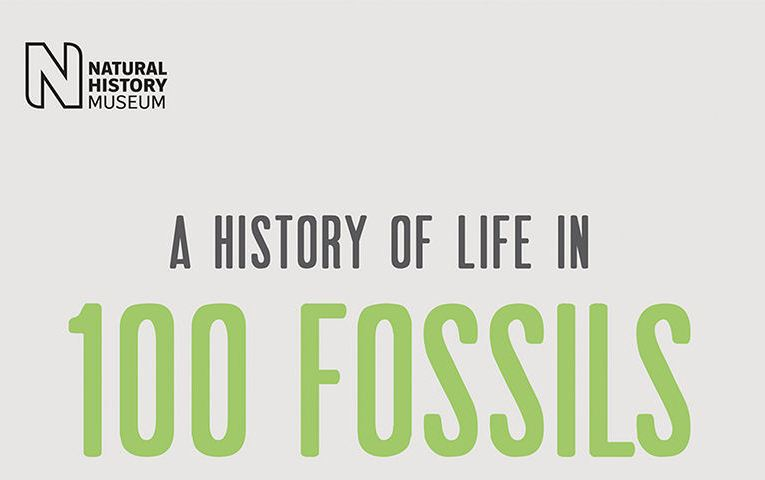 Book review: A History of Life in 100 Fossils, by Paul D Taylor and Aaron O'Dea