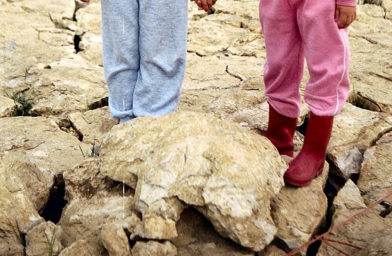 Lost Dorset dinosaur footprint site