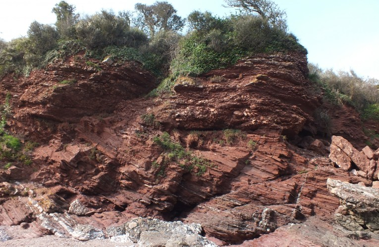 Excursion to the South Devon coast led by Prof John CW Cope (National Museum Wales)