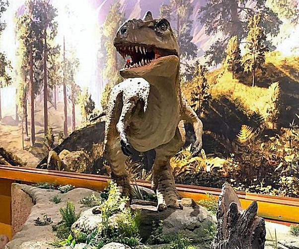 India's 'Dinosaur Fossil Park' – Raiyoli