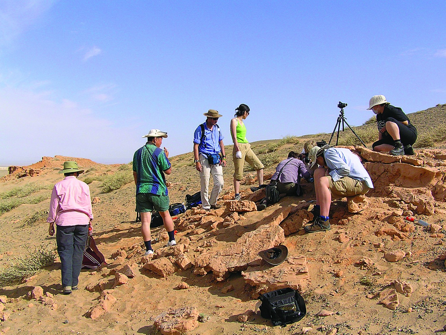 In search of dinosaur eggs in Mongolia