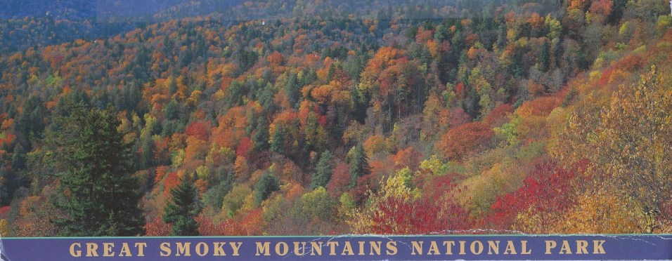 Celeste went to the Great Smoky Mountains, Tennessee.
