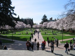 Picture of University of Washington Quad in the Spring