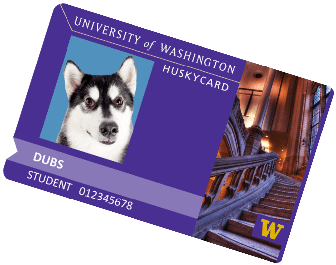 Image result for uw husky card