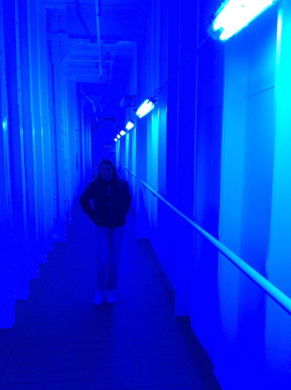 MSC Magnífica pasillo azul